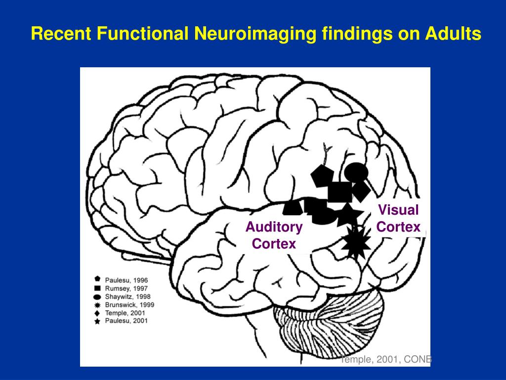 Recent Functional Neuroimaging findings on Adults