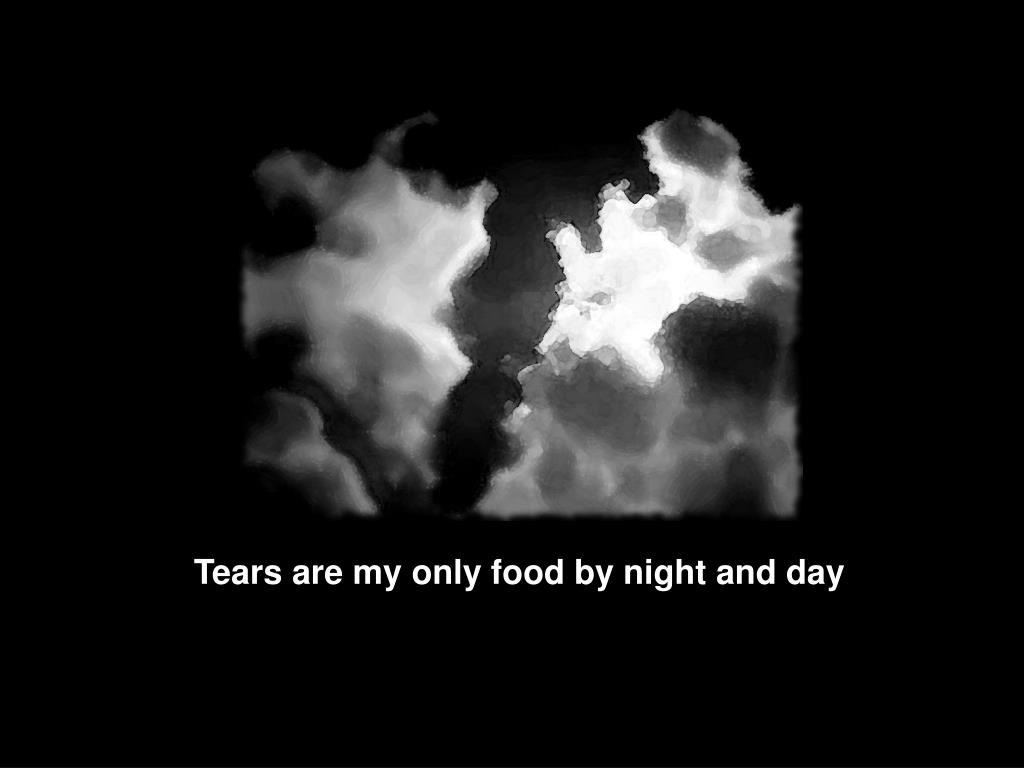 Tears are my only food by night and day