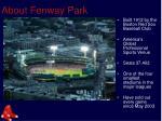 about fenway park