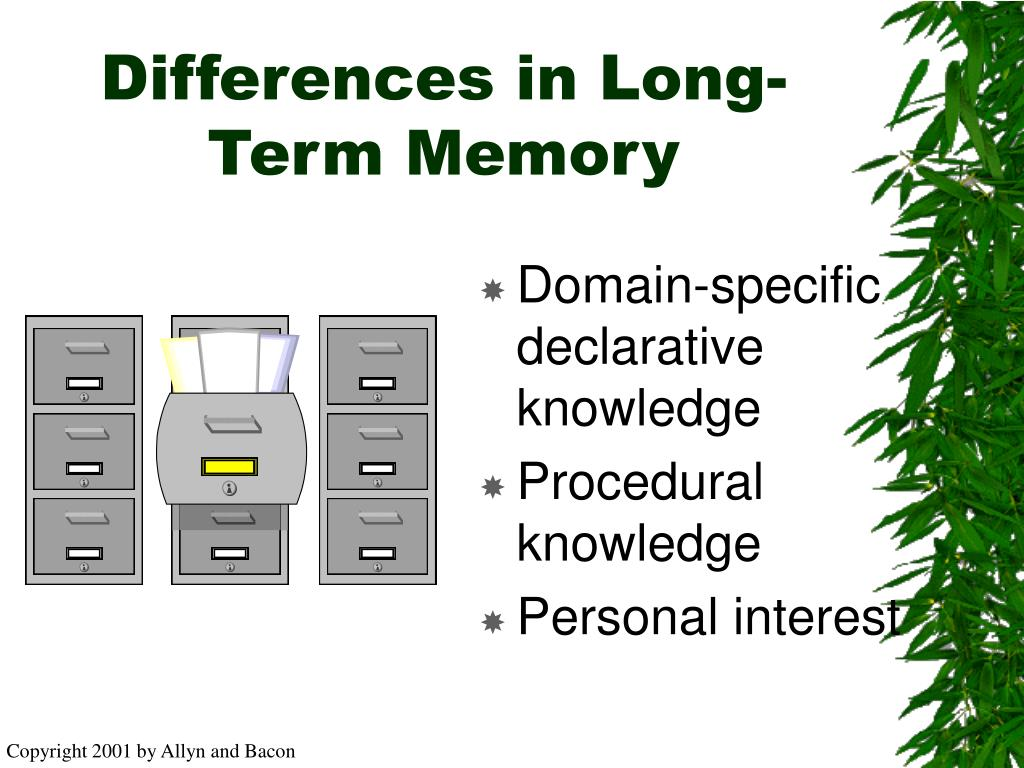 Differences in Long-Term Memory