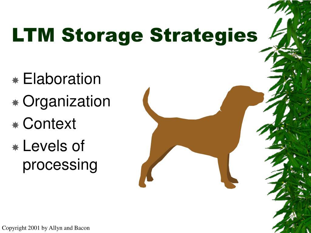 LTM Storage Strategies