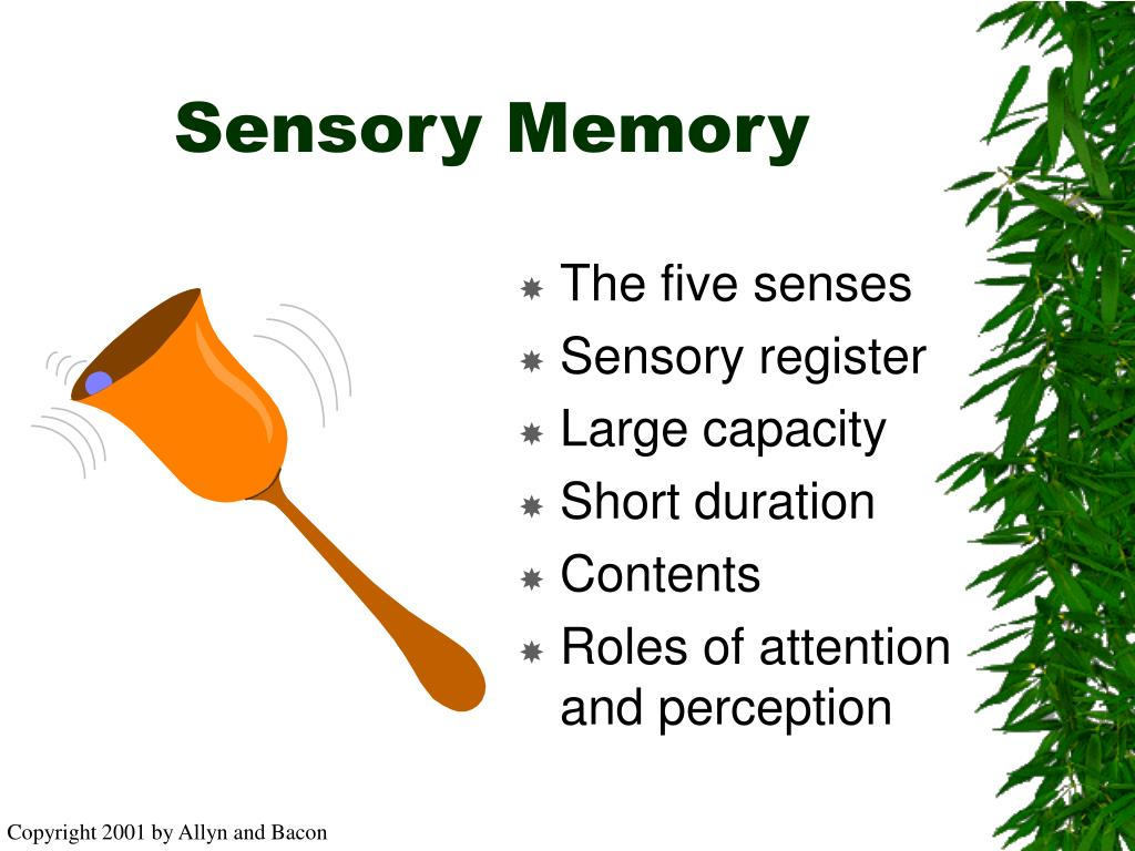 sensory memory This clip covers the 1st stage of memory for the atkinson-shiffrin memory model it includes an overview of the sperling experiment which gauged the.
