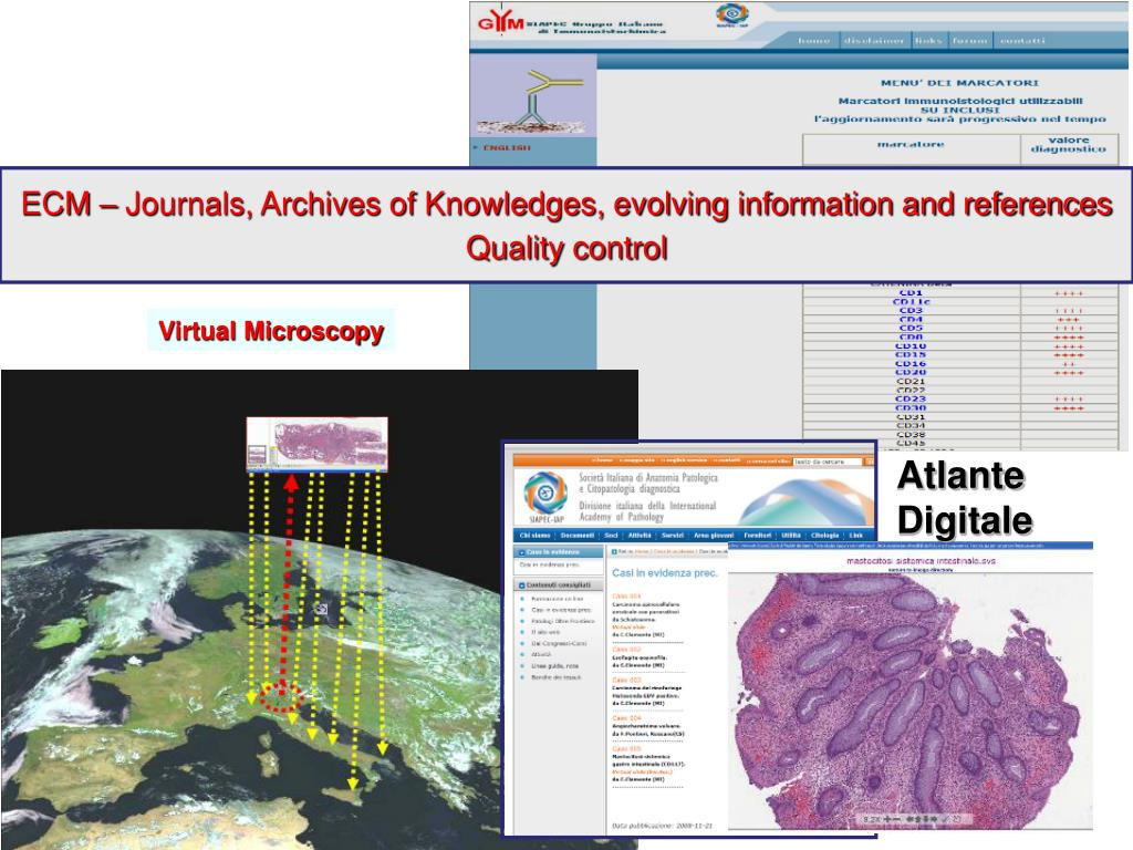 ECM – Journals, Archives of Knowledges, evolving information and references