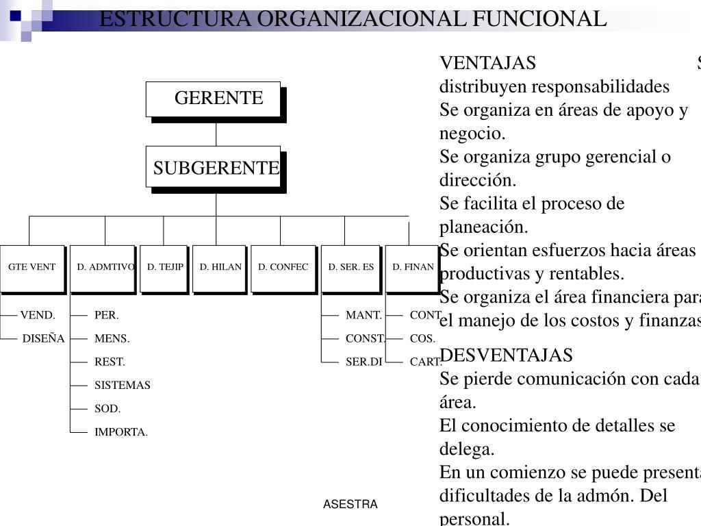 ESTRUCTURA ORGANIZACIONAL FUNCIONAL