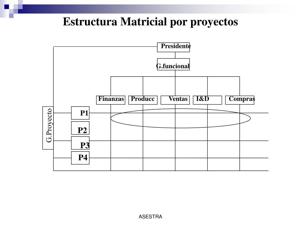 Estructura Matricial por proyectos