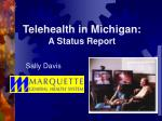 telehealth in michigan a status report