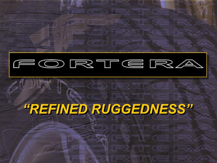 Refined ruggedness l.jpg