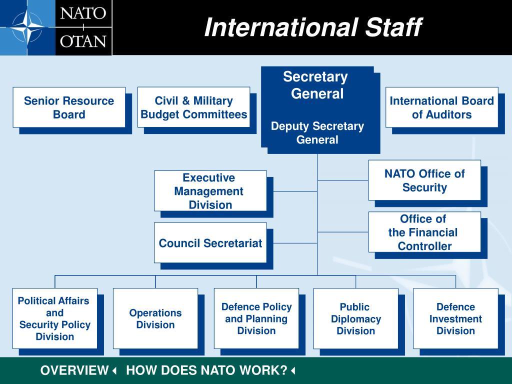 International Staff