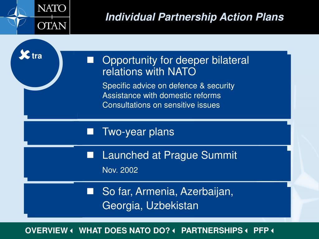 Individual Partnership Action Plans