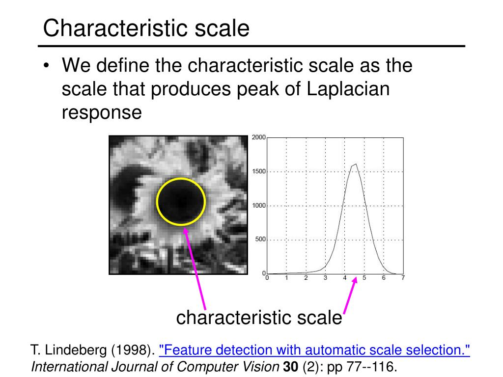 Characteristic scale