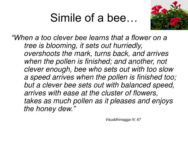 Simile of a bee…