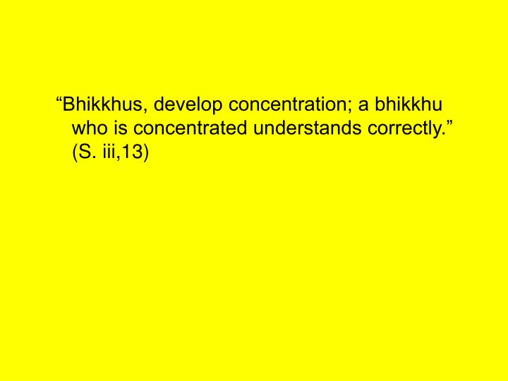 """Bhikkhus, develop concentration; a bhikkhu who is concentrated understands correctly."" (S. iii,13)"