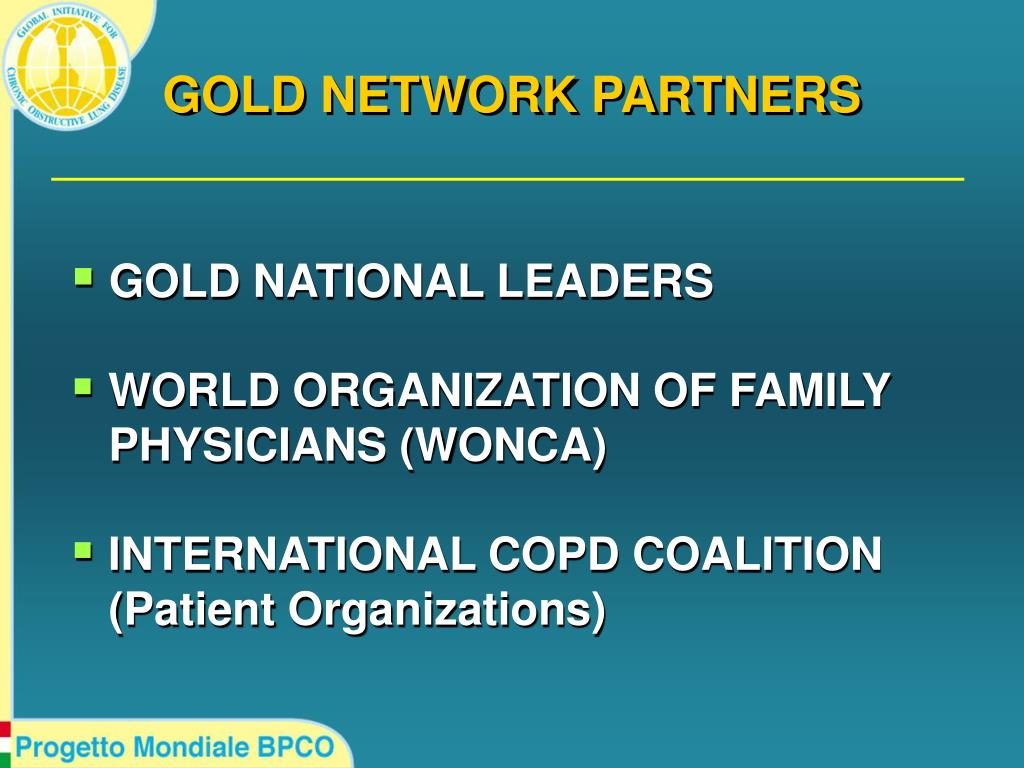 GOLD NETWORK PARTNERS
