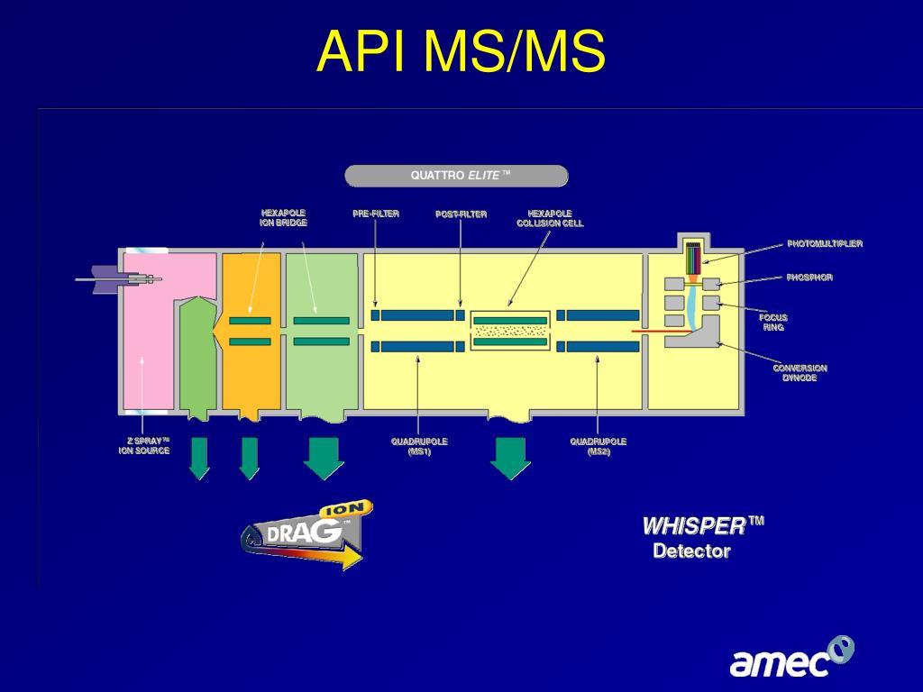 API MS/MS