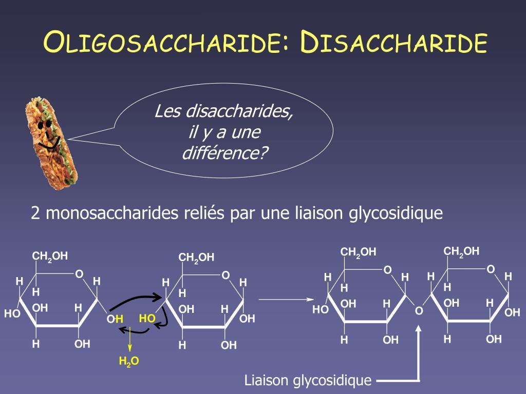 Liaison glycosidique