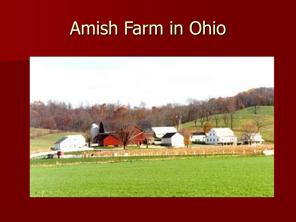 Amish Farm in Ohio