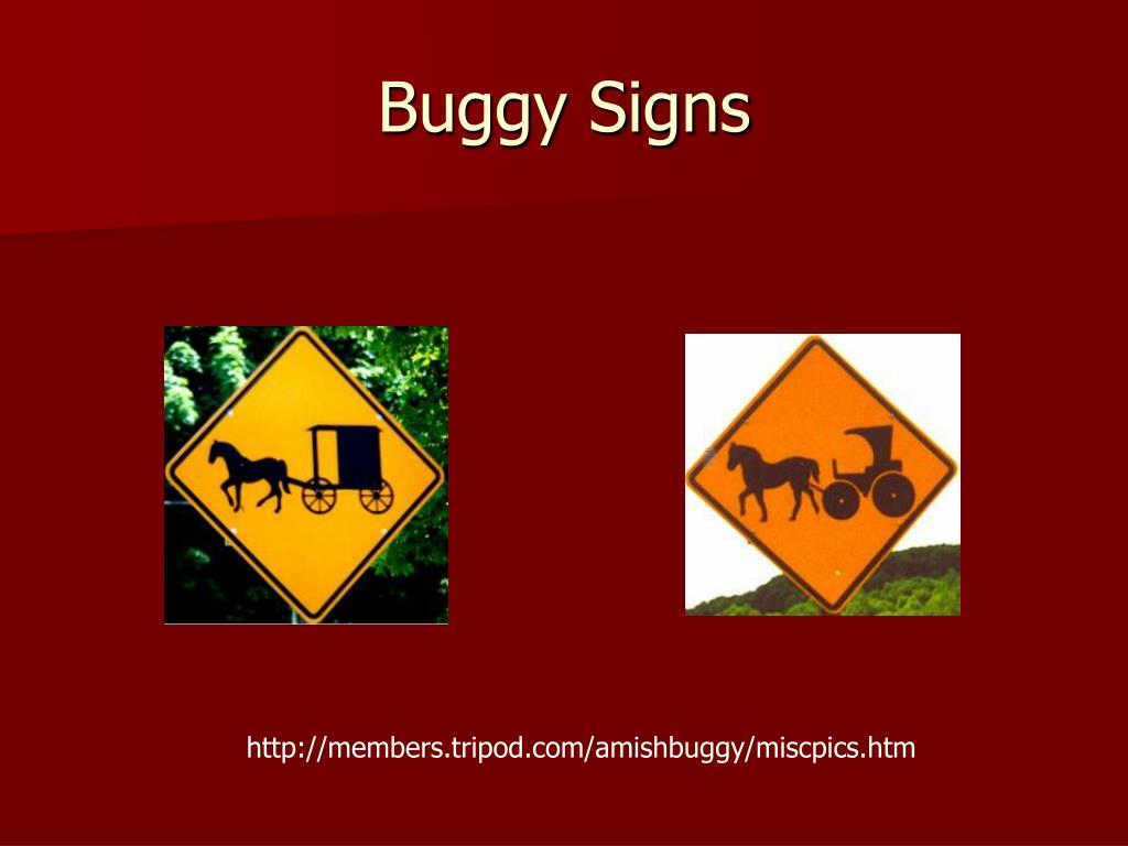 Buggy Signs