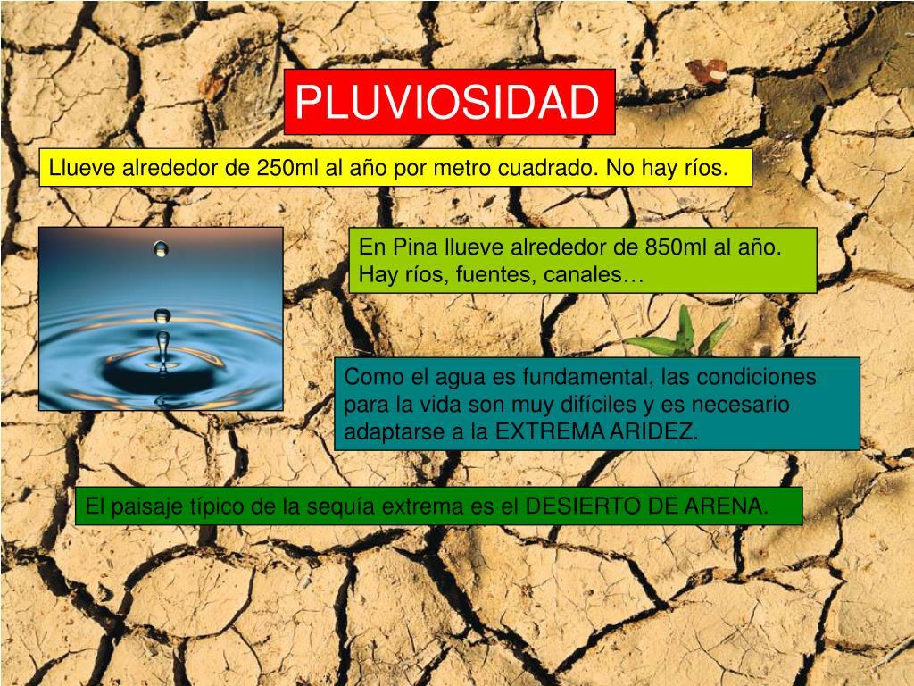 PLUVIOSIDAD