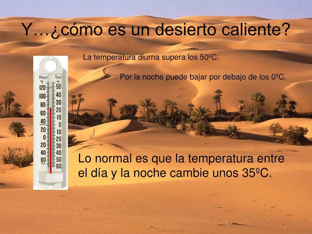 Y…¿cómo es un desierto caliente?