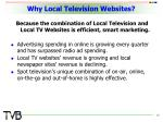 why local television websites16