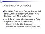 swedes in new netherlands