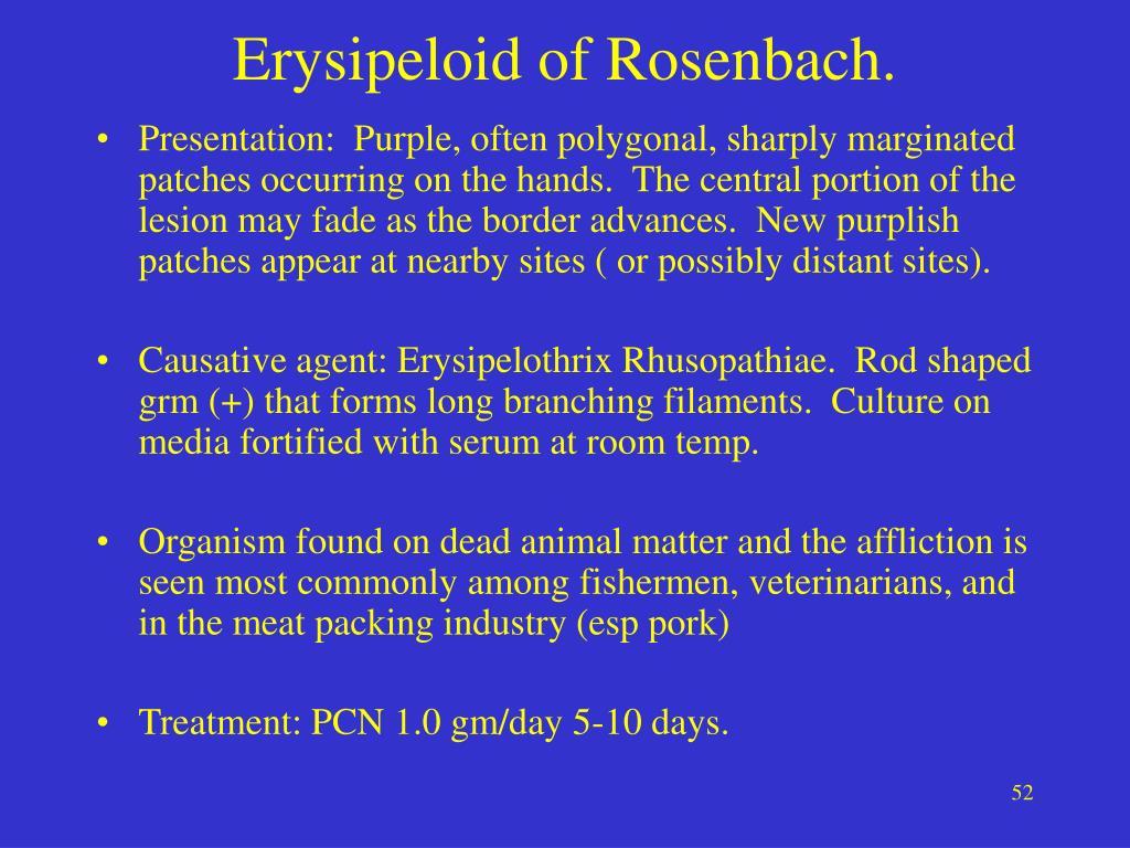 Erysipeloid of Rosenbach.