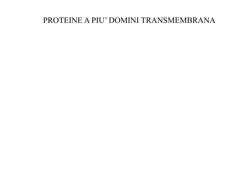 PROTEINE A PIU' DOMINI TRANSMEMBRANA