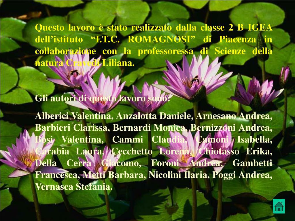 """Questo lavoro è stato realizzato dalla classe 2 B IGEA  dell'istituto """"I.T.C. ROMAGNOSI"""" di Piacenza in collaborazione con la professoressa di Scienze della natura Cravedi Liliana."""