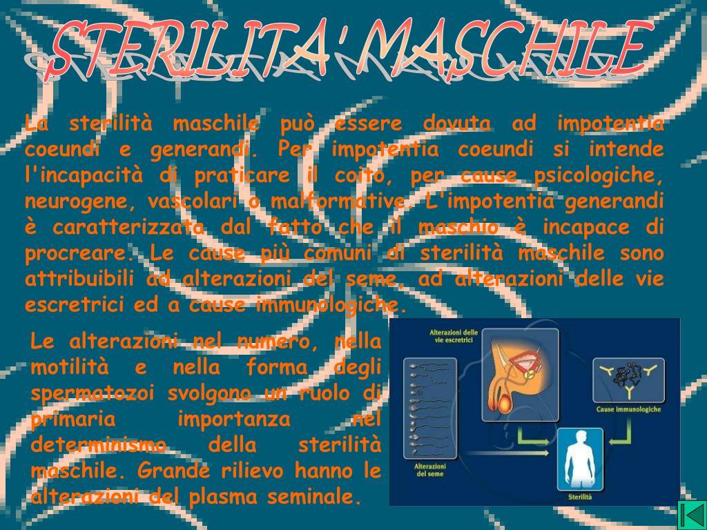 STERILITA' MASCHILE