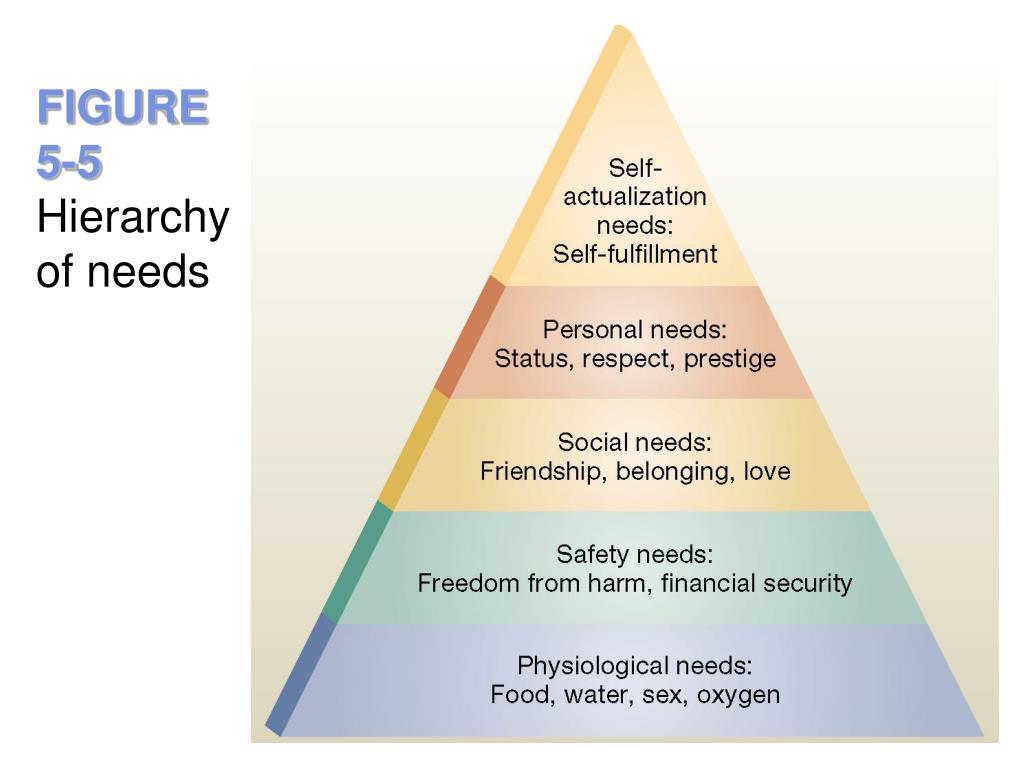 consumer attitude formation and change pdf