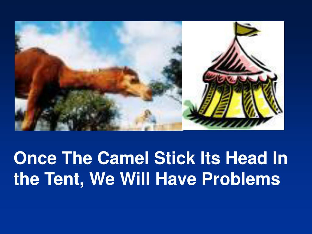 Once The Camel Stick Its Head In the Tent, We Will Have Problems