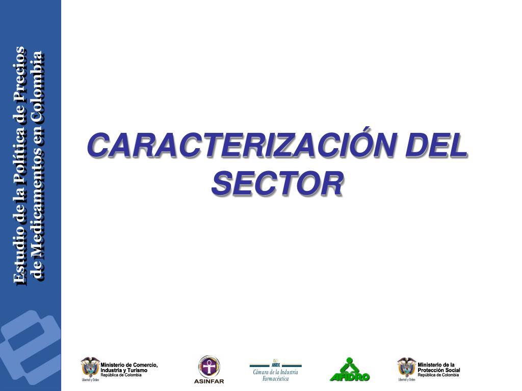 CARACTERIZACIÓN DEL SECTOR