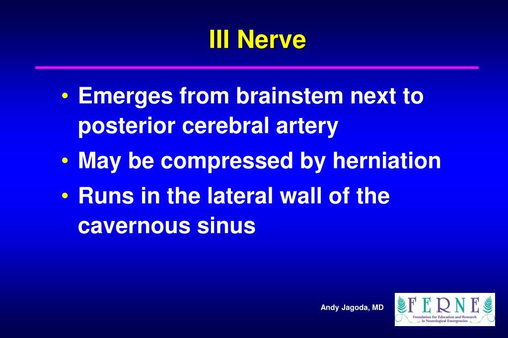 III Nerve