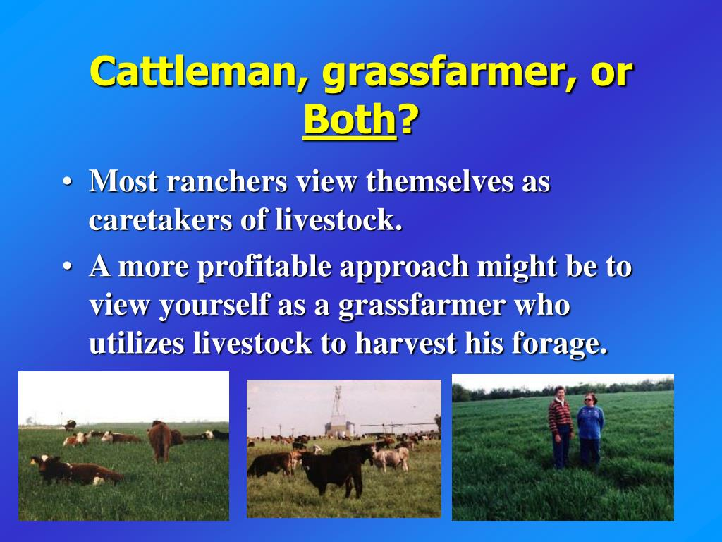 Cattleman, grassfarmer, or