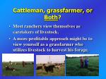 cattleman grassfarmer or both