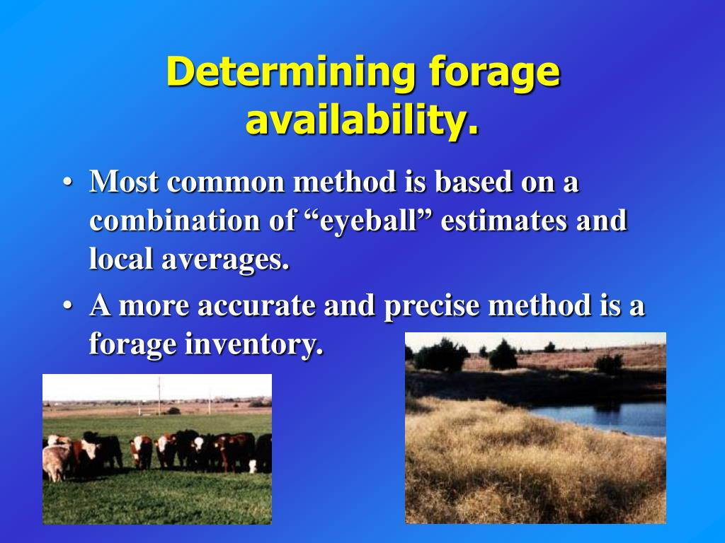 Determining forage availability.