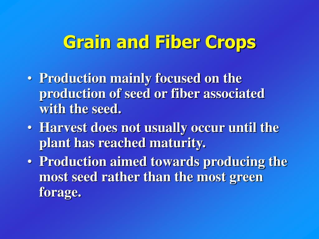 Grain and Fiber Crops