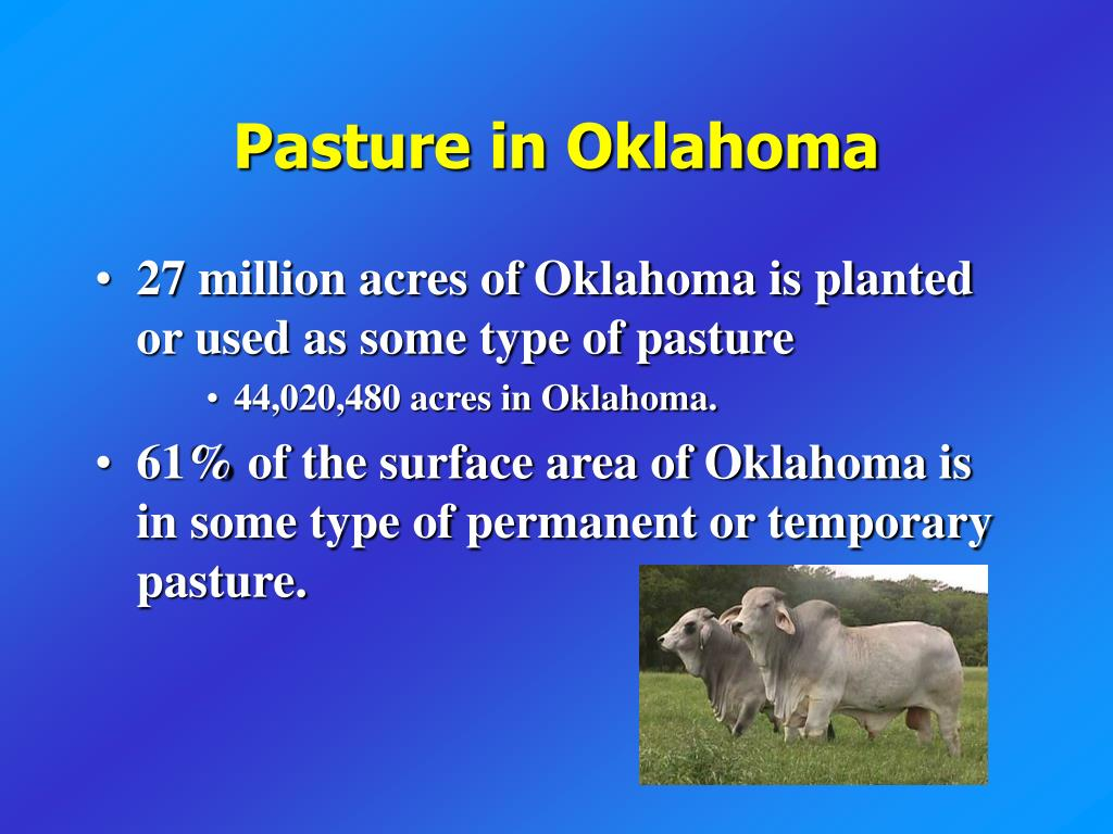 Pasture in Oklahoma