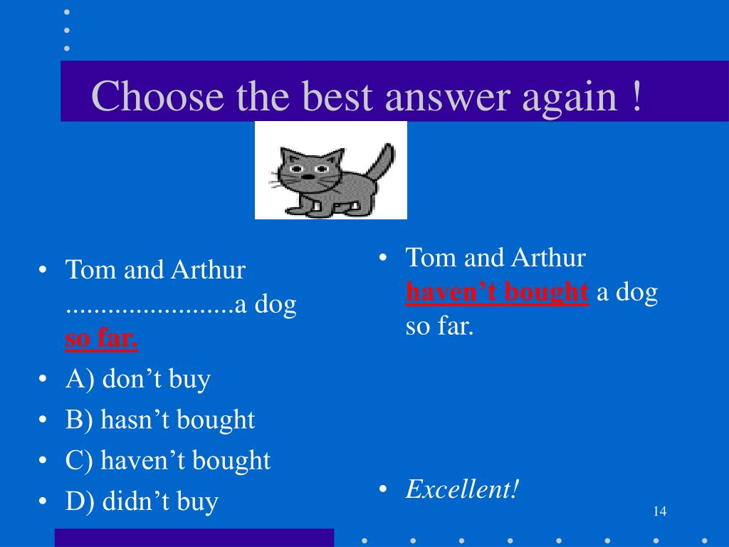 Tom and Arthur ........................a dog