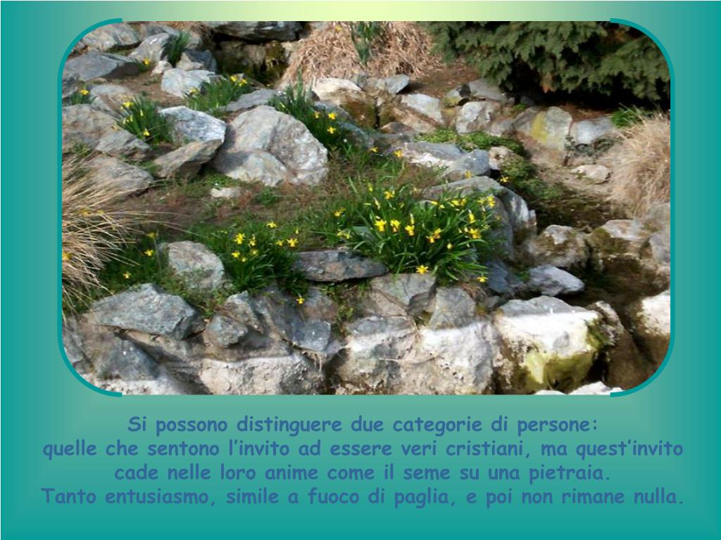 Si possono distinguere due categorie di persone: