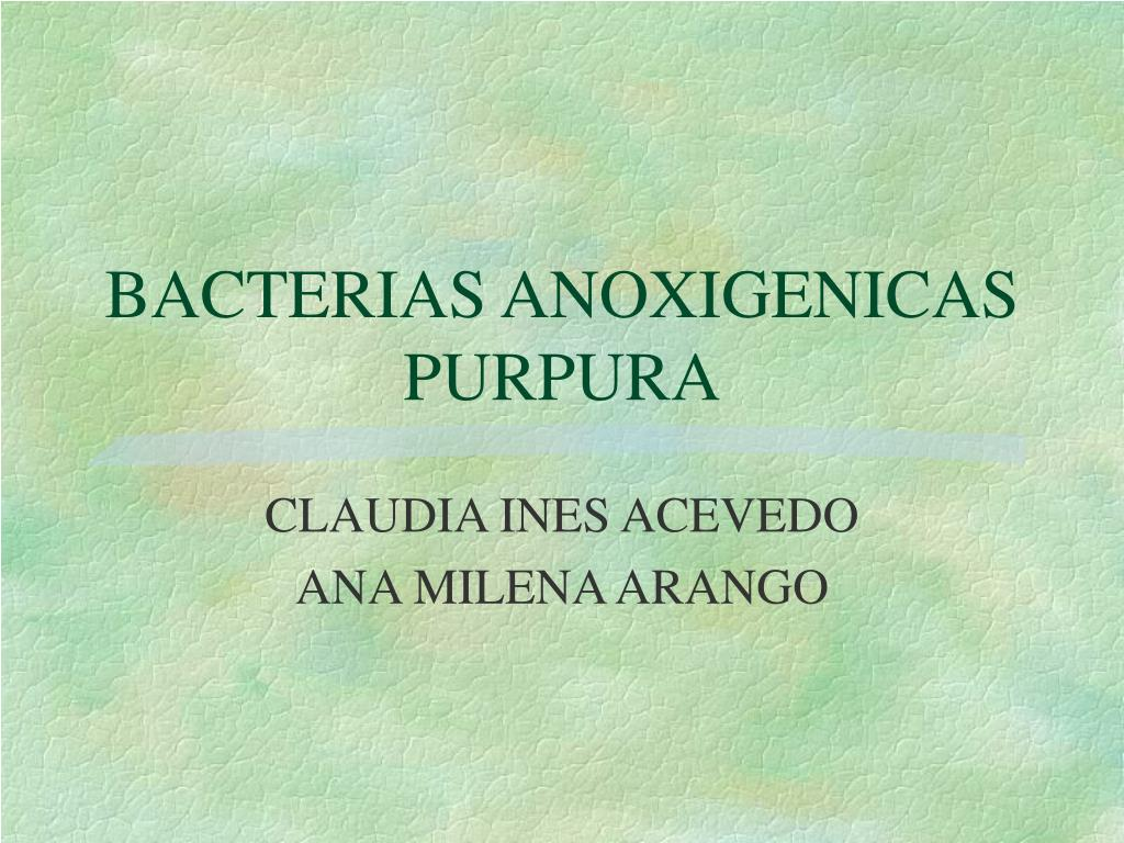 BACTERIAS ANOXIGENICAS  PURPURA