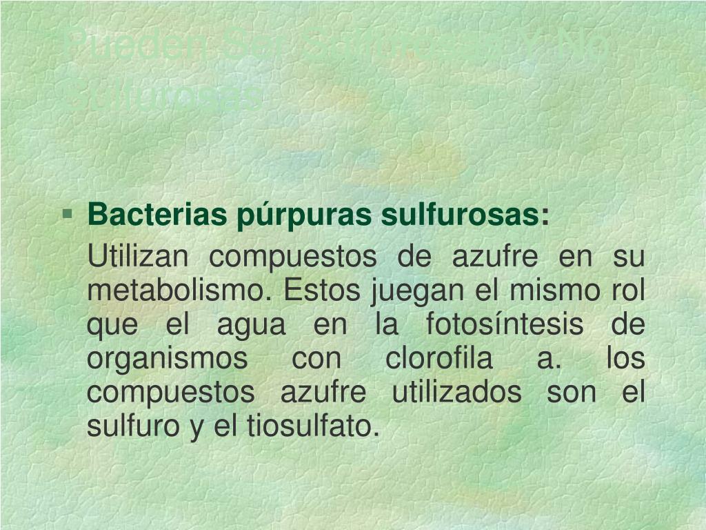 Pueden Ser Sulfurosas Y No Sulfurosas