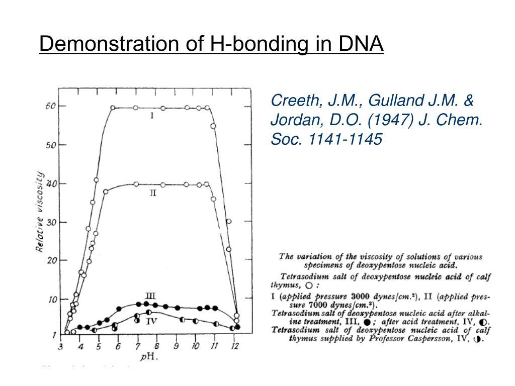 Demonstration of H-bonding in DNA