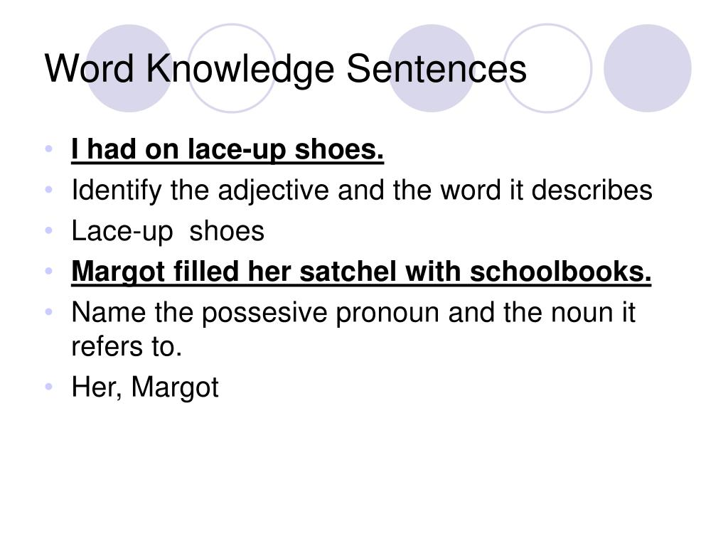 Word Knowledge Sentences