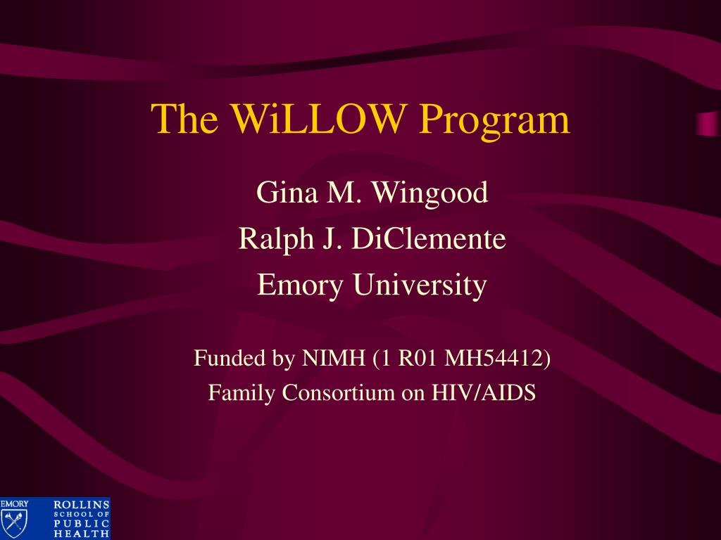 The WiLLOW Program