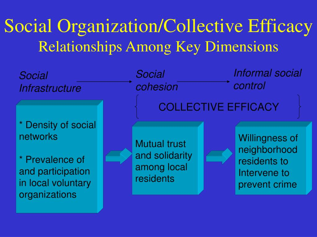social organized crimes Many could argue that organized crime takes place in our society because of the circumstances in which our society has chosen to exist - social organized crime perspective paper introduction.