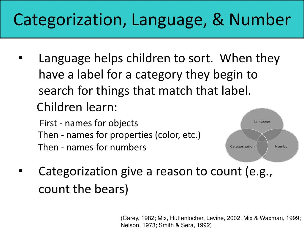 Categorization, Language, & Number