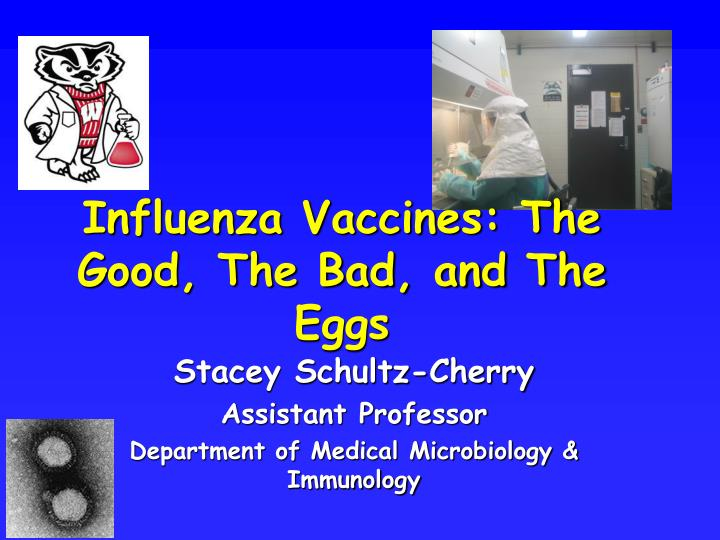 Influenza Vaccines: The Good, The Bad, and The Eggs