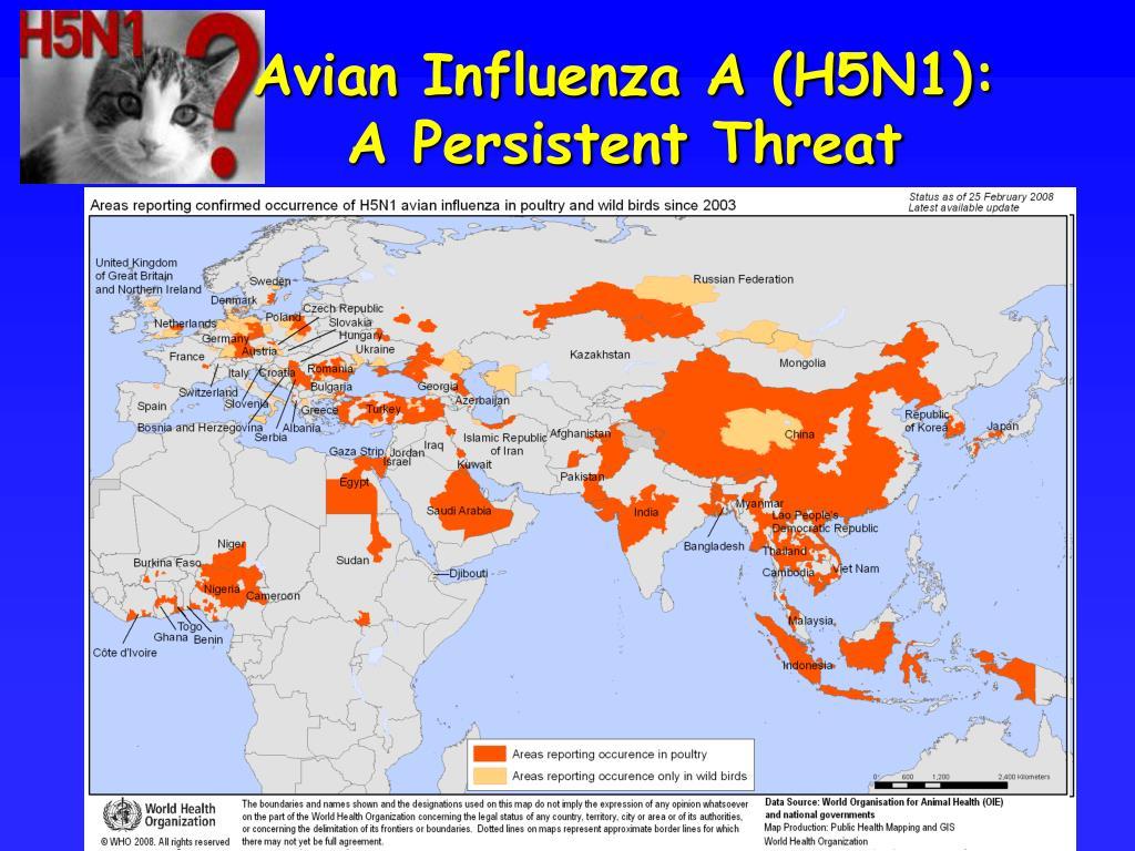 Avian Influenza A (H5N1):