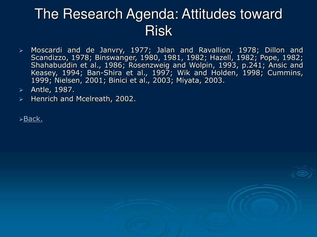 The Research Agenda: Attitudes toward Risk